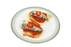 Sardines on toast. Sardines with tomato on toast on a plate isolated against white Royalty Free Stock Photos