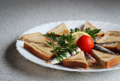 Sardines and toasted bread Stock Image