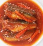 Sardines in Tomatensaus Royalty-vrije Stock Foto