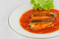 Sardines in tomato  sauce. Sardines in tomato sauce valuable to the body Stock Photography