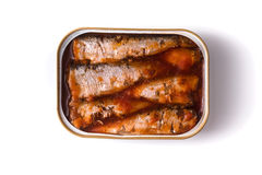 Sardines in tomato sauce on a white background Royalty Free Stock Image