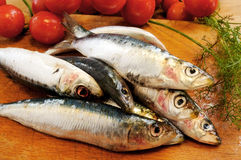 Sardines on a wooden cutting board Stock Photo