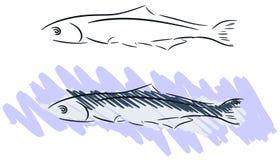 Sardinha estilizado ilustração do vetor