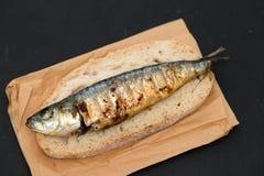 Sardinha grelhada no pão no fundo preto Imagens de Stock Royalty Free