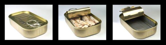 A sardinha pode Fotos de Stock Royalty Free