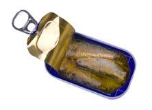 A sardinha pode Fotografia de Stock