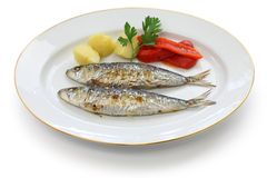 Sardinhas assadas, charcoal grilled sardines Stock Photos