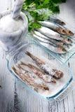 Sardinhas com sal Fotos de Stock Royalty Free