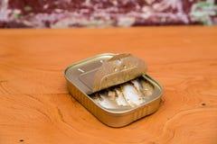 Sardinhas de Springwater em uma lata Imagem de Stock
