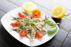 Sardinhas postas de conserva salada com manjericão e tomate Fotos de Stock Royalty Free