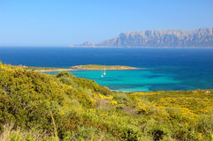 Sardinia Royalty Free Stock Photography