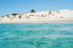 Sardinia beach dunes Royalty Free Stock Photo