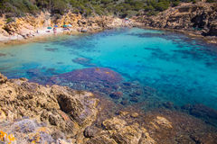 Sardinia beatifull beach crystal water with rock and tree Stock Photos