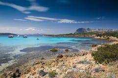 Sardinia Capo Di Coda cavallo zatoka Zdjęcia Royalty Free