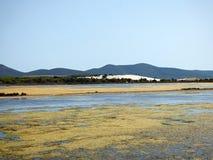 Italy, Sardinia, Carbonia Iglesias, Porto Pino, the pond behind the white sand dunes. Sardinia, Carbonia Iglesias, Porto Pino, the pond behind the white sand Stock Images