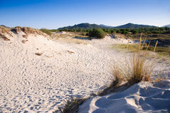 Sardinia desertic landscape Royalty Free Stock Photos