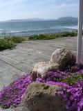 sardinia hav Royaltyfri Foto