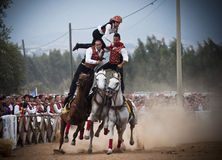Sardinia. Hazard on horseback. Pariglias showdown during the traditional Olive Festival in Villamassargia, a village in southwest Sardinia(Italy) the big island Stock Photography