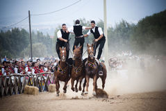 Sardinia. Horses and Riders. Pariglias at Olive Festival in Villamassargia, a village in southwest Sardinia(Italy Stock Images