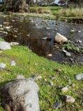 Sardinia. Natural environments royalty free stock photo