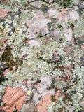 sardinia Naturalny środowisko Powulkaniczne skały obrazy stock