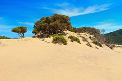 Sardinia - Piscinas dune Stock Photo