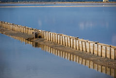 Sardinia.Salt λίμνες Στοκ Εικόνες