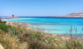 Sardinia, Stintino Zdjęcie Royalty Free