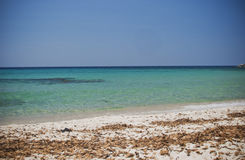 Sardinia. Tropical waters. Clear and turquoise waters overlookin a beach of southernmost part of the island Stock Photos