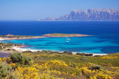 Sardinian Bay Stock Photography