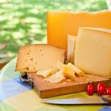 Sardinian cheese Royalty Free Stock Image