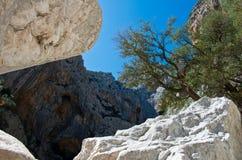 Sardinian gorropu каньона Стоковое фото RF