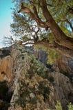 Sardinian gorropu каньона Стоковое Фото