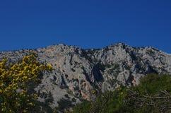 Sardinian gorropu каньона Стоковые Изображения