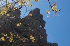 Sardinian gorropu каньона Стоковая Фотография RF