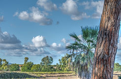 Sardinian landscape Stock Photo