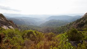 Sardinian landskap för bergsommarsolnedgång Skog på backen under himmel med moln arkivbild