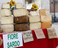 Sardinian origin cheese for sale in the local market Stock Image