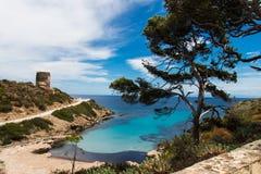 Sardinien-Strand mit blauem und hellblauem Meer, weißer Sand, Paradies Lizenzfreie Stockfotos