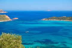Sardinige Stock Afbeeldingen