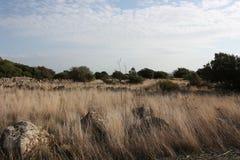 Sardisch plateau Stock Afbeelding