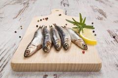 Sardnines on wooden kitchen board. Stock Image