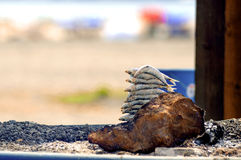 Sardynki na skewer łupce przy plażą w Malaga, Hiszpania Zdjęcia Stock