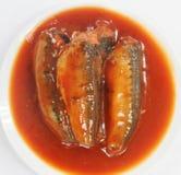 Sardynki W Pomidorowym Kumberlandzie fotografia royalty free