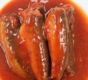 Sardynki W Pomidorowym Kumberlandzie fotografia stock