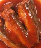 Sardynki W Pomidorowym Kumberlandzie obraz stock