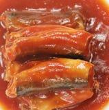 Sardynki W Pomidorowym Kumberlandzie obrazy stock