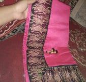Saree royalty free stock photo