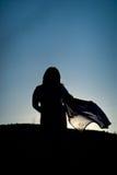 Saree no por do sol Fotos de Stock Royalty Free