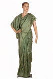 Sarees indianos Fotos de Stock